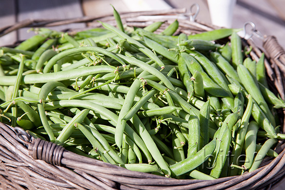 Italian Green Bean Antipasta