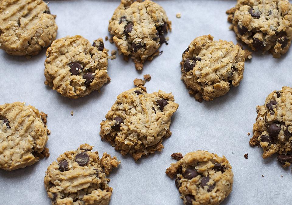 oatmeal chocolate chip cookies - bite