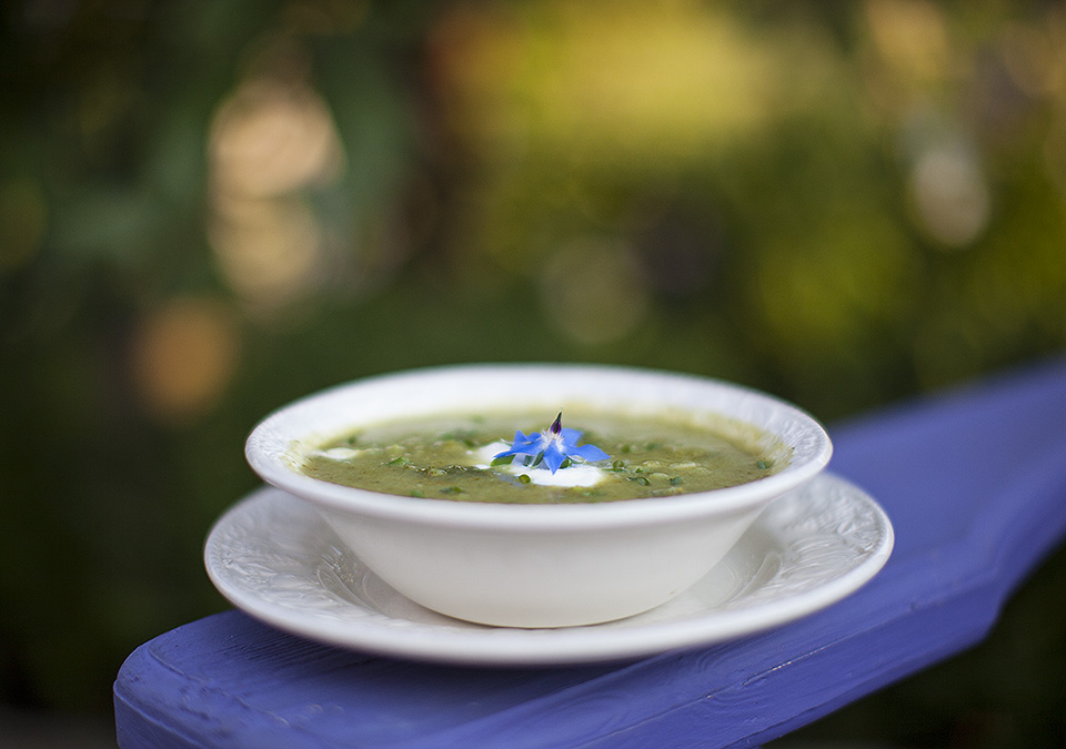 cream of broccoli soup without the cream - bitebymichelle.com