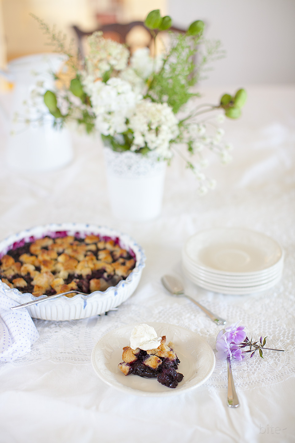 blueberry betty and an exciting new project l bitebymichelle.com