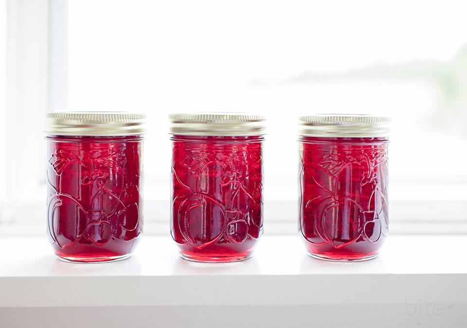 raspberry jelly l bitebymichelle.com