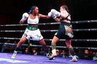 LR_SHO-FIGHT NIGHT-SHIELDS VS HAMMER-TRAPPFOTOS-04132019-0250