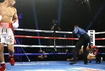 Edgar_Berlanga_vs_Eric_Moon_knockdown