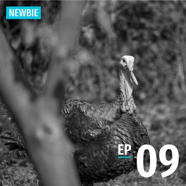 Bite-size Taiwanese - Newbie - Episode 9 - A bowl of Chiayi Turkey Rice