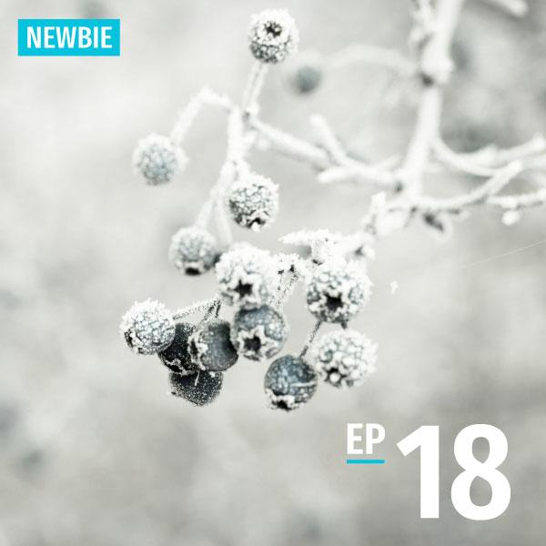 Bite-size Taiwanese - Newbie - Episode 18 - Weather, Seasons, Fruits - Learn Taiwanese Hokkien
