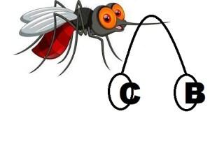 do a mosquito transmit Virus B C