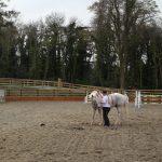 Romy and Ralphie in Ireland