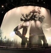"CURVED KEDAR AND SLIDING HANGER SHEER VOILE WARNER BROS ""E3"""