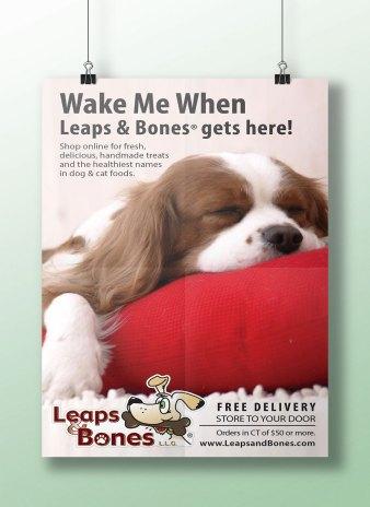 Leaps-ad