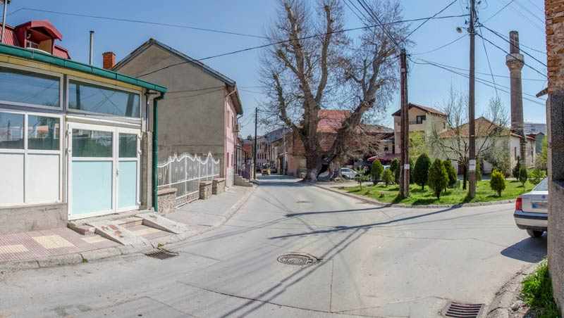 Битолскиот чинар - фотографиран 2017 година