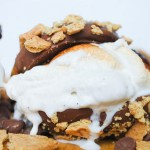S'Mores Chocolate Chip Ice Cream Sandwich