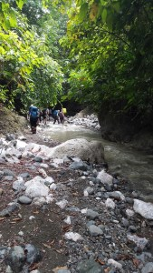 trekkers walking down a river.  It is shallow and has a rocky bed much of which is exposed.  The river is bounded by trees and low cliffs on the right and trees on the left