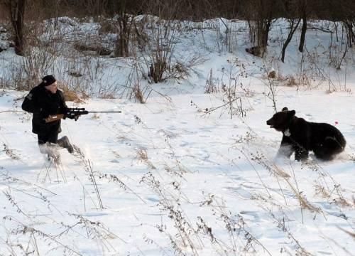 Run-from-bear-4