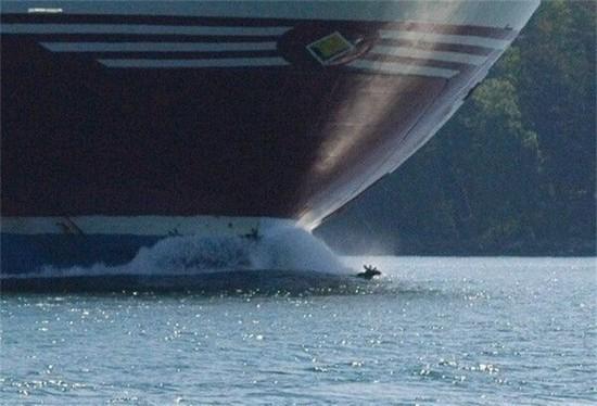 Rare Alaskan boat towing moose