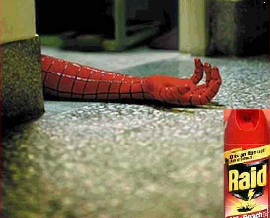 Spidermanraid