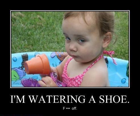 Watering a shoew