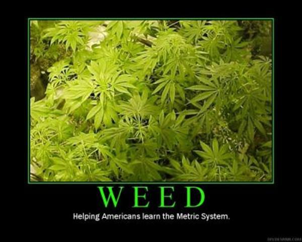 Weed metric