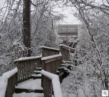 Xmas snow4