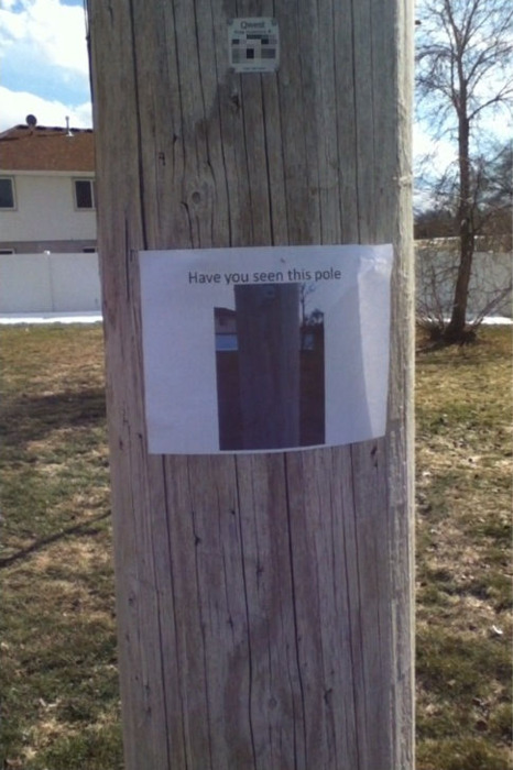 Have you seen this pole