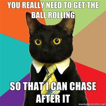 Boss cat1