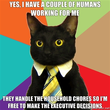 Boss cat3