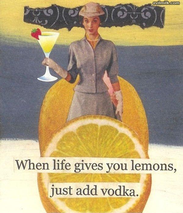 Life_Gives_You_Lemons949