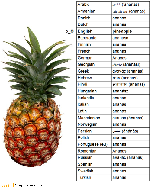 Pineapple in languages