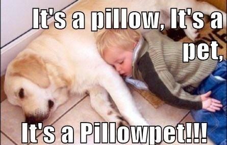 Pillowpet