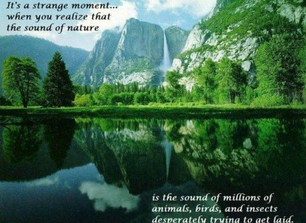 Scenic mother nature