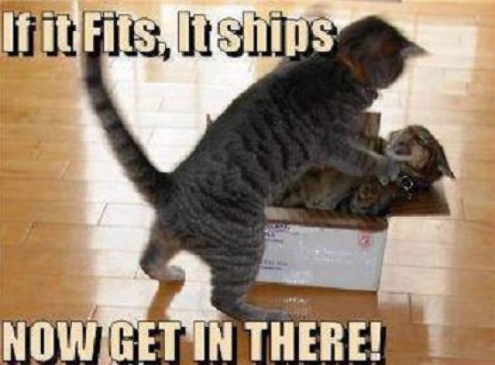 If it fits it ships