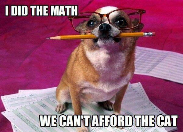 I did the math