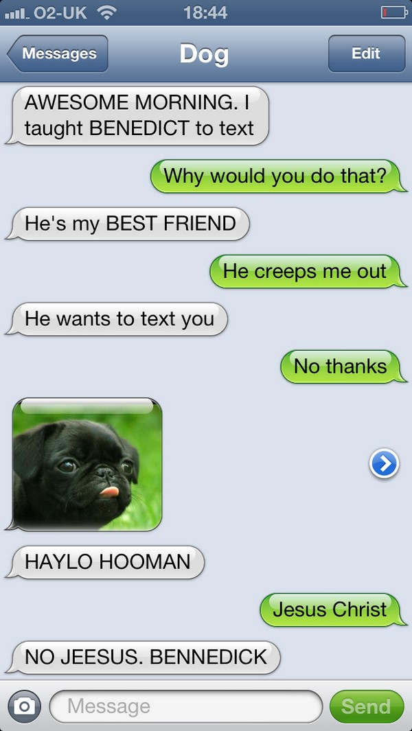 I taught my dog to text