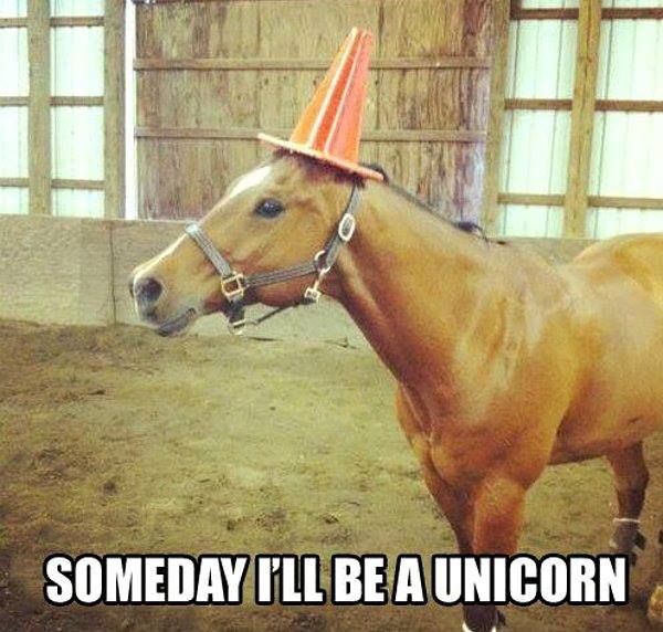 someday i'll be a unicorn