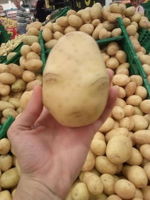 Alien Potato