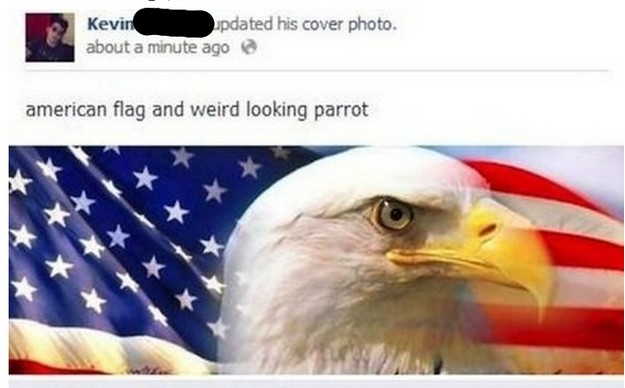 Weird parrot