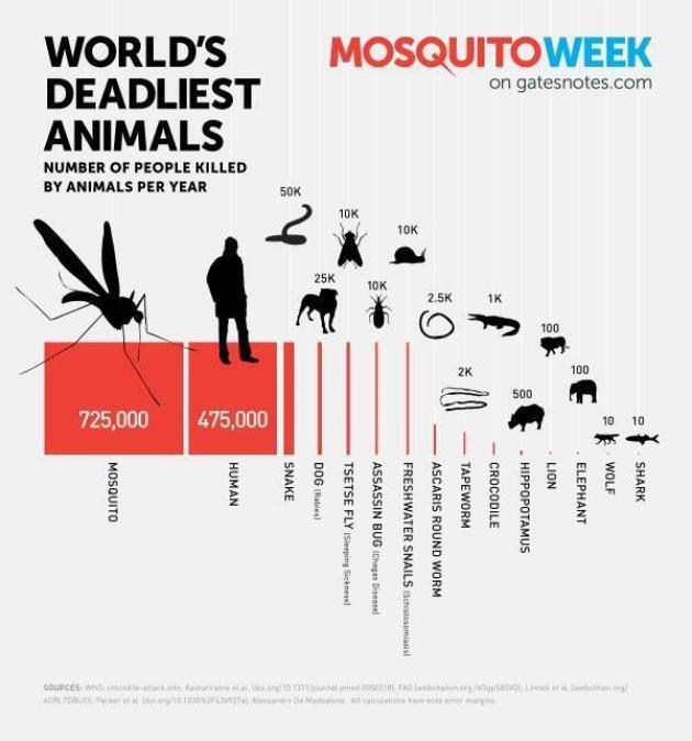 World's deadlist animals