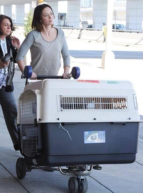 Suarez has arrived in Barcelona