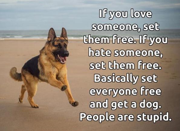 Set them free