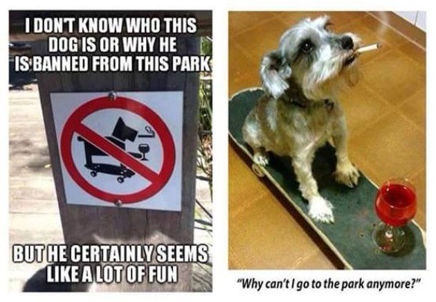 Banned from the park
