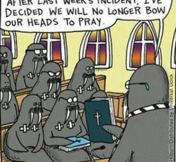 Walrus prayer