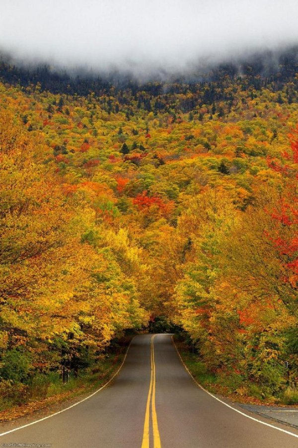breathtaking-fall-photos