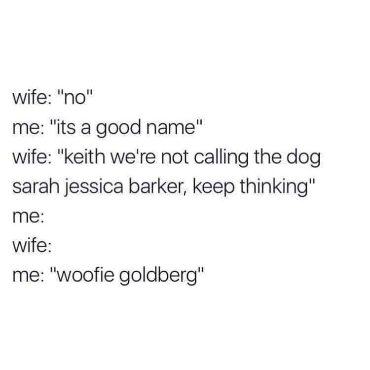 [Image: Finding-the-dog-a-good-name....jpg?w=750]
