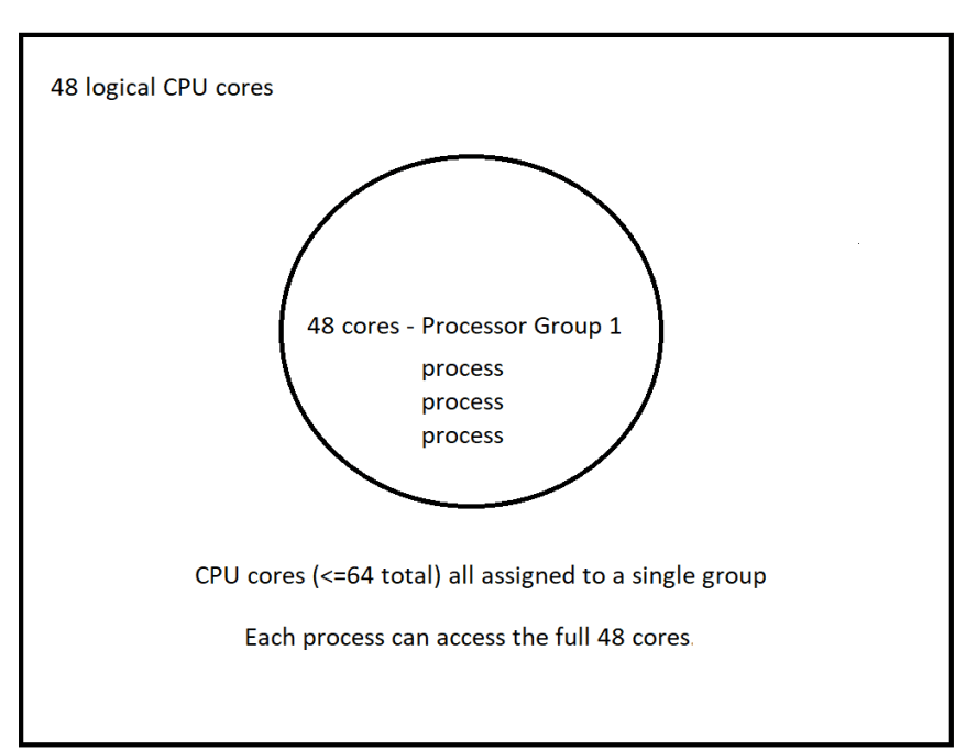 A 48 Logical Core System Layout. 48 cores are available to any given process.