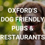 Oxford dog friendly restaurants