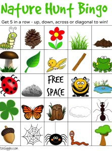 Nature Hunt Bingo