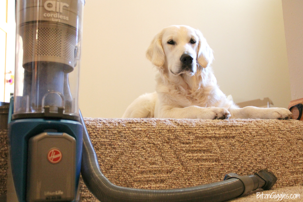 5 Reasons Why I Cut the Cord On My Vacuum - Abandoning my old vacuum for a Hoover cordless vacuum has changed the way I clean! It saves me time and headaches! Come on over and check it out!