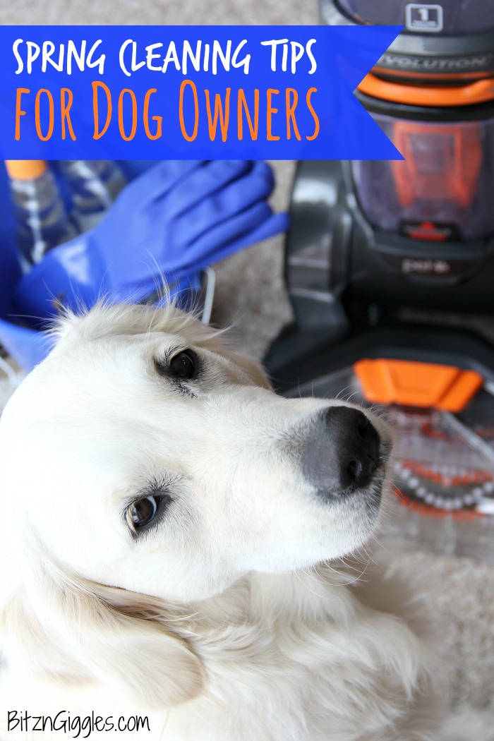 Spring Cleaning Tips for Dog Owners - Are you sure you thought of everything when it comes to cleaning this spring? Keep your home clean and your dog and family healthy with these important tips!