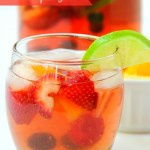 Berry Wine Spritzer - A delicious sparkling spritzer infused with fresh berries and citrus!