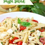 Caprese Pasta Salad - A quick and easy salad with the fresh tomatoes, mozzarella and basil! Yum!
