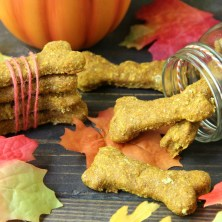 Homemade Pumpkin Oatmeal Dog Treats